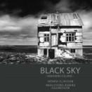 Black-Sky-175x175_2013